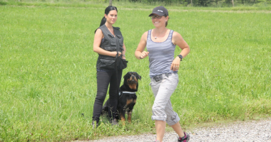 Hundealltagstauglichkeitskurs